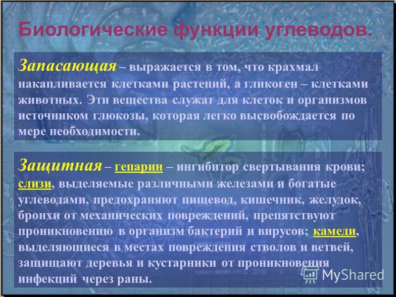 Гликоген — википедия