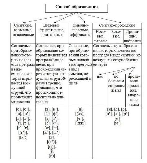 Проясняй слова: русский язык! что такое фонема? (job.education.apscis.ruslang) : рассылка : subscribe.ru