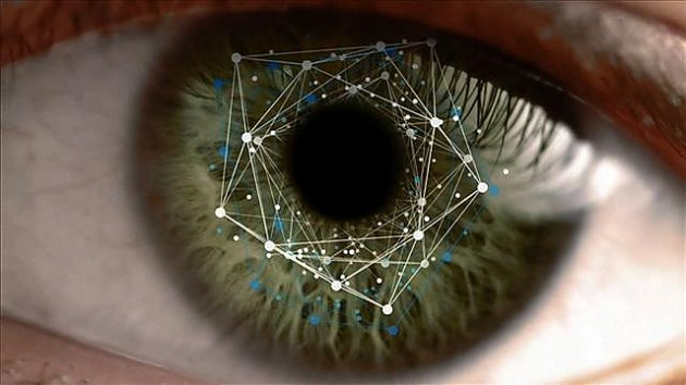 Радужка глаза - что представляет собой и на чем основано?