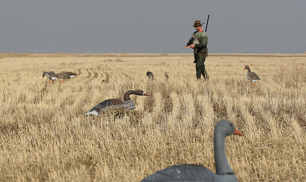 Что такое охота?