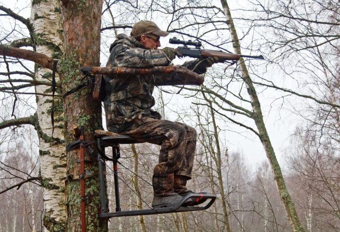 Лабаз на дереве: пошаговая инструкция, советы и рекомендации, фото - truehunter.ru
