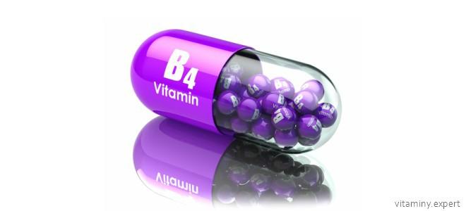 Витамин b4 (холин) – симптомы избытка и недостатка, суточная норма и польза на ydoo.info