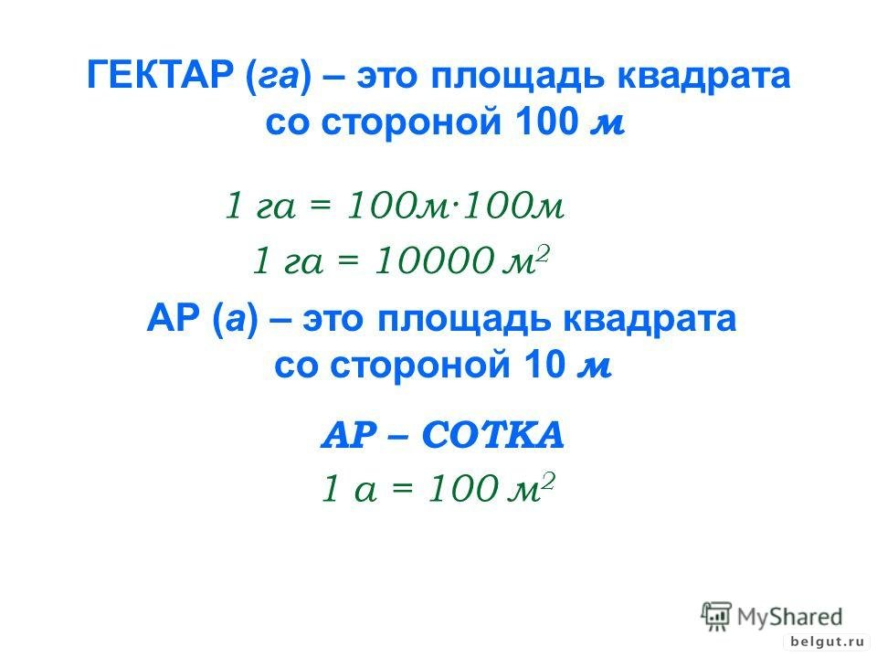 Гектар - что такое и сколько? :: syl.ru