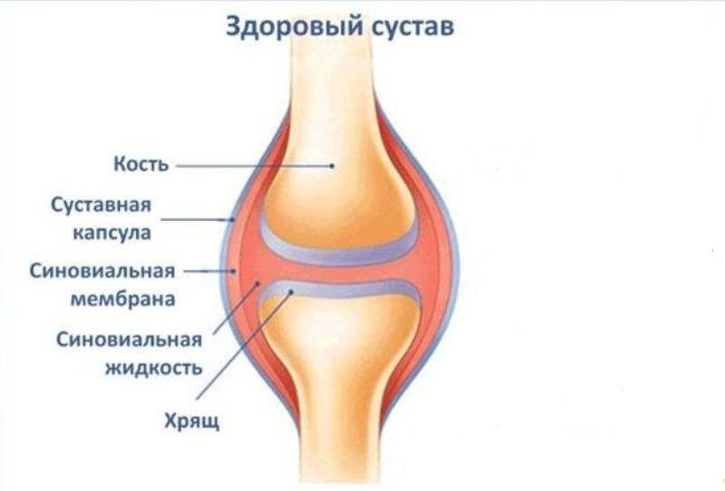 Протез синовиальной жидкости: показания, эффективность, названия