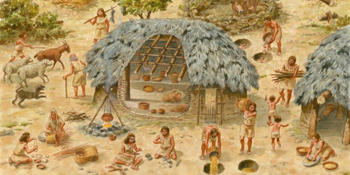 Неолит - это... эпоха неолита