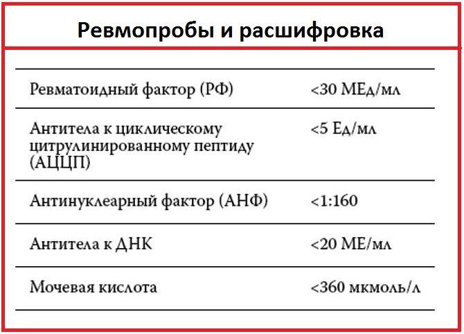 Аццп анализ крови: что это такое, цена, норма, значения