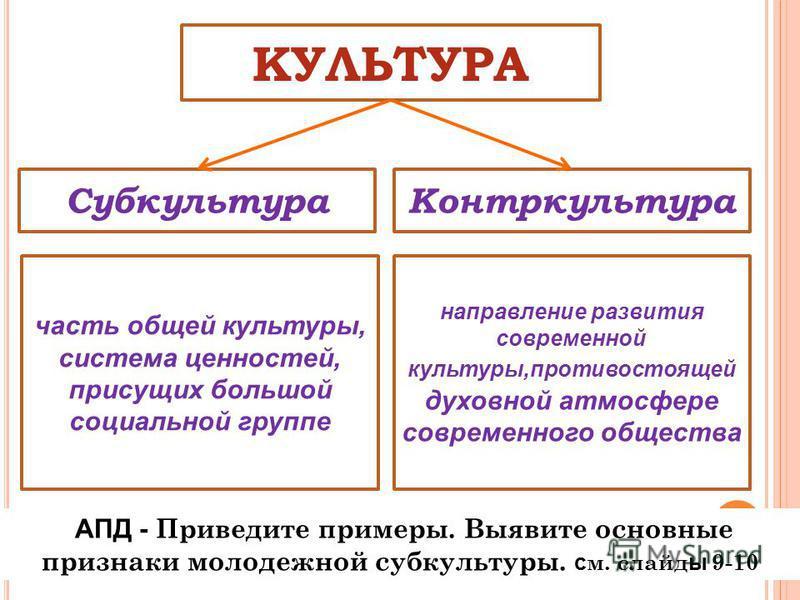 Контркультура в социологии