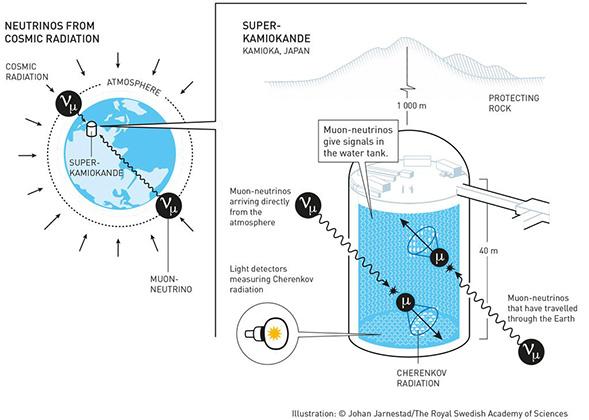 Что такое нейтрино
