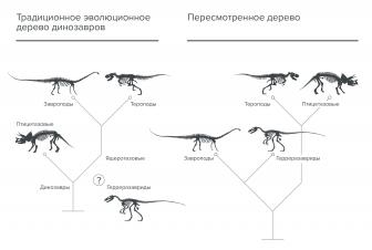 Динозаври   динопедія   fandom