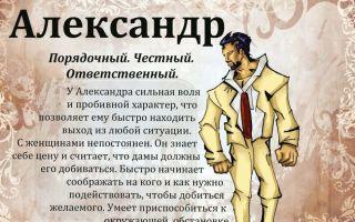 Саша+маша — википедия. что такое саша+маша