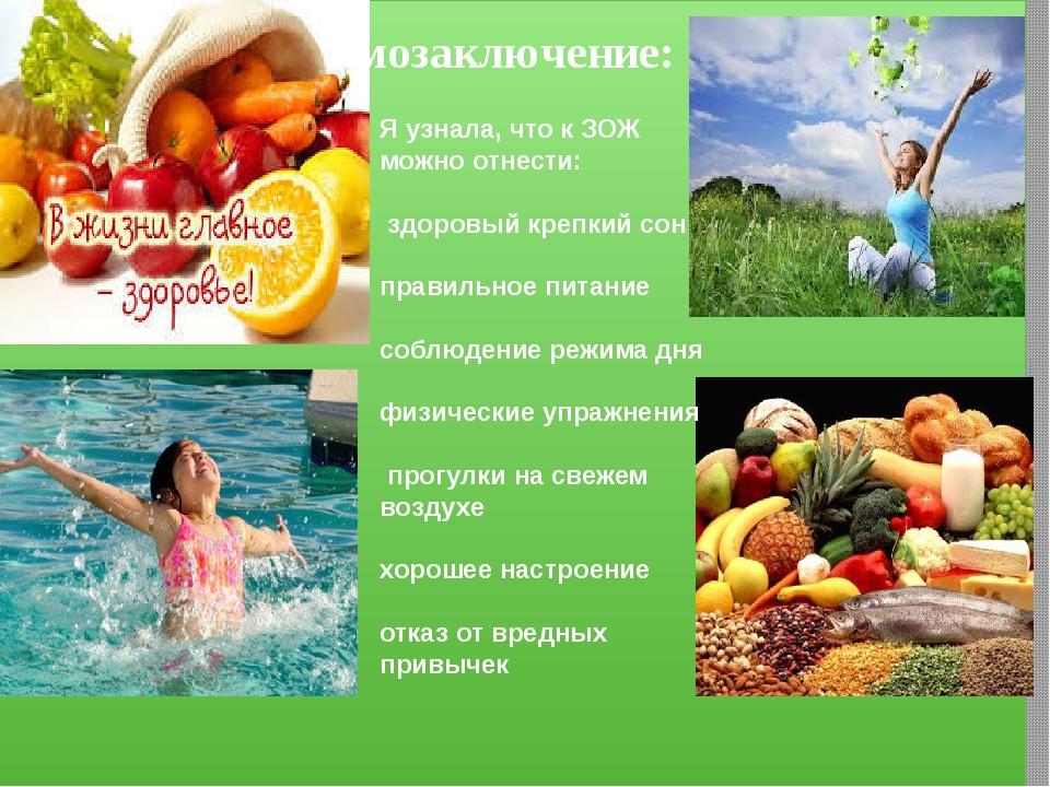 Что такое зож, определение блога ozog.ru