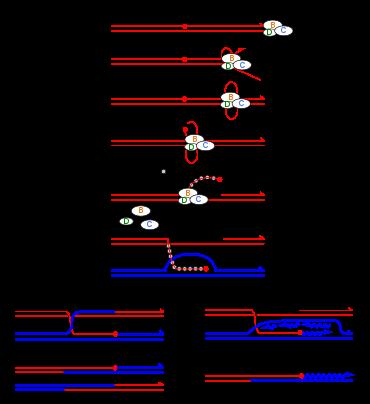 Генерация и рекомбинация носителей - carrier generation and recombination - qwe.wiki