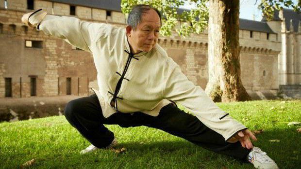 Цигун для начинающих: что это такое, чем полезная гимнастика, упражнения