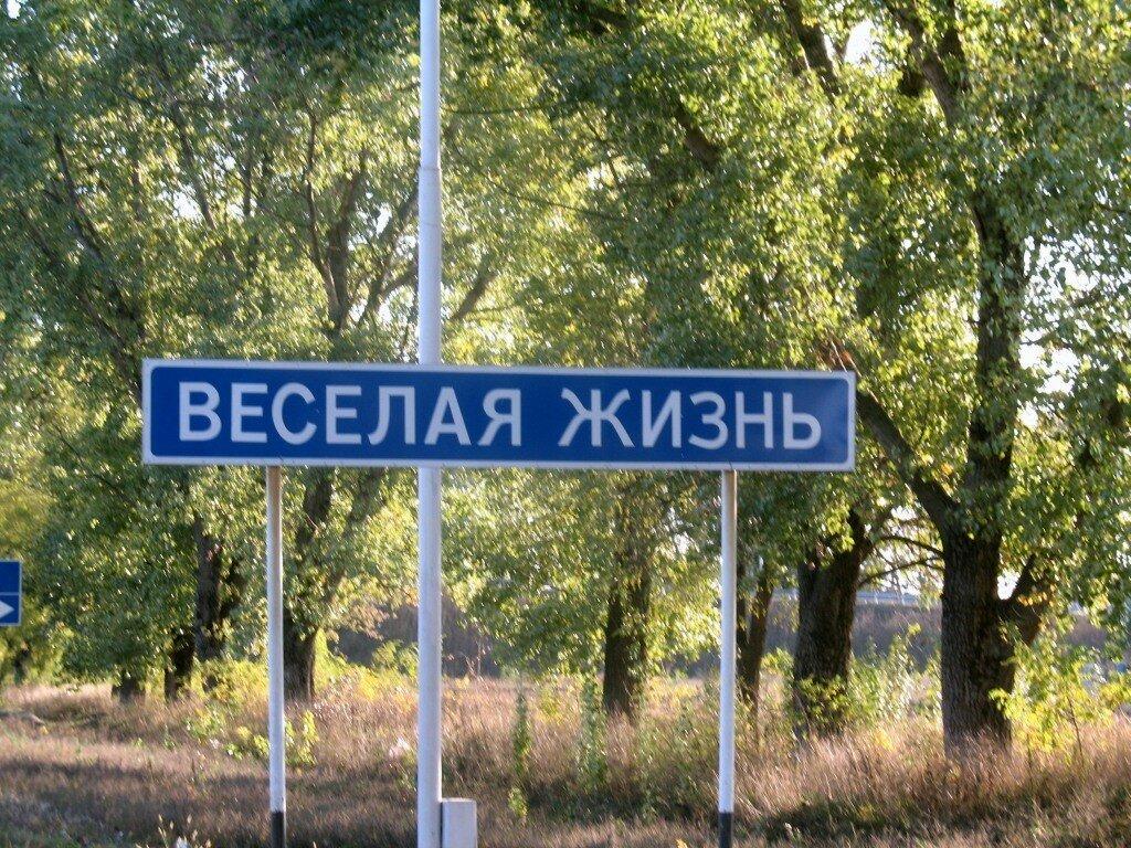 Населенный пункт - это... основные виды населенных пунктов
