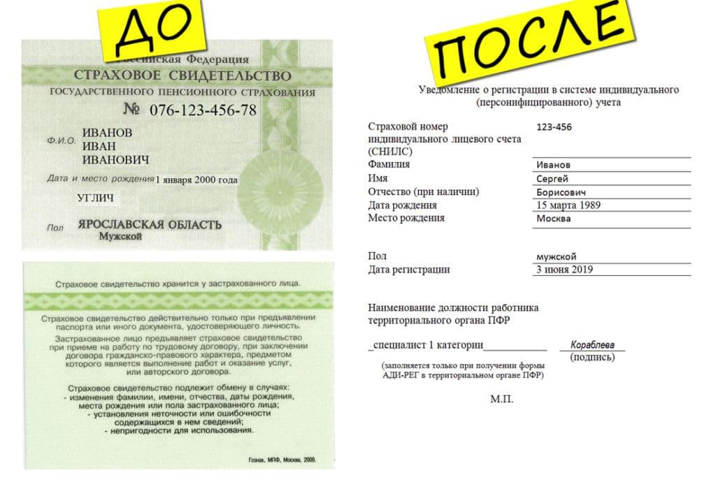 Отмена снилса: какой документ выдают вместо зеленых карточек — новости в т—ж