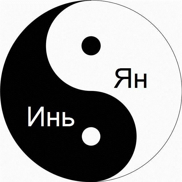 Концепция дуальности мира: что стоит знать про знаменитый символ инь и ян