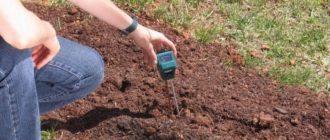Плодородие почв зависит от содержания в ней. что такое, от чего зависит и как повысить плодородие почвы. как улучшить плодородие