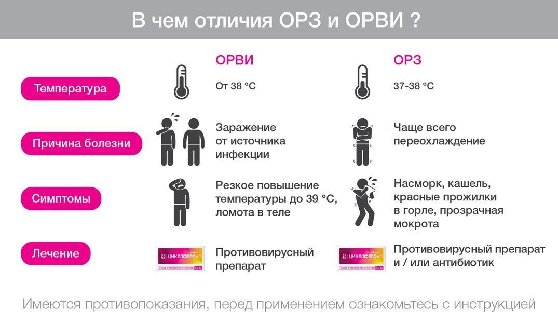 Орз и орви: разница заболеваний и их особенности