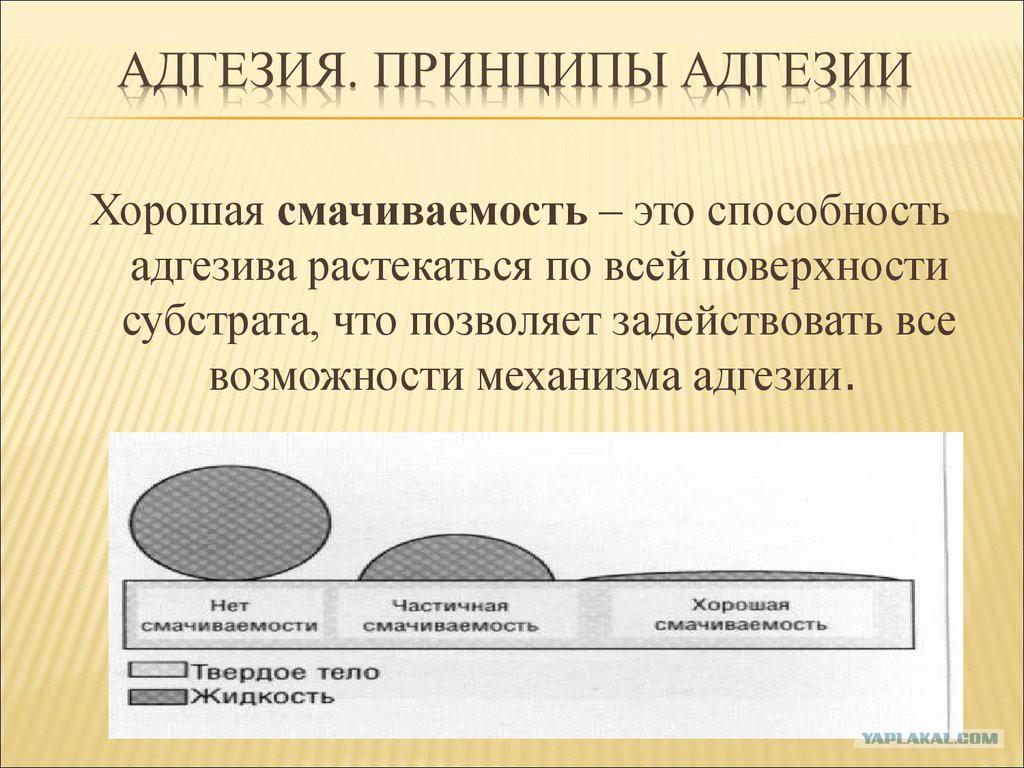 Адгезия лакокрасочного покрытия при покраске мебельных фасадов и  автомобиля - kraski-laki-gruntovka.ru