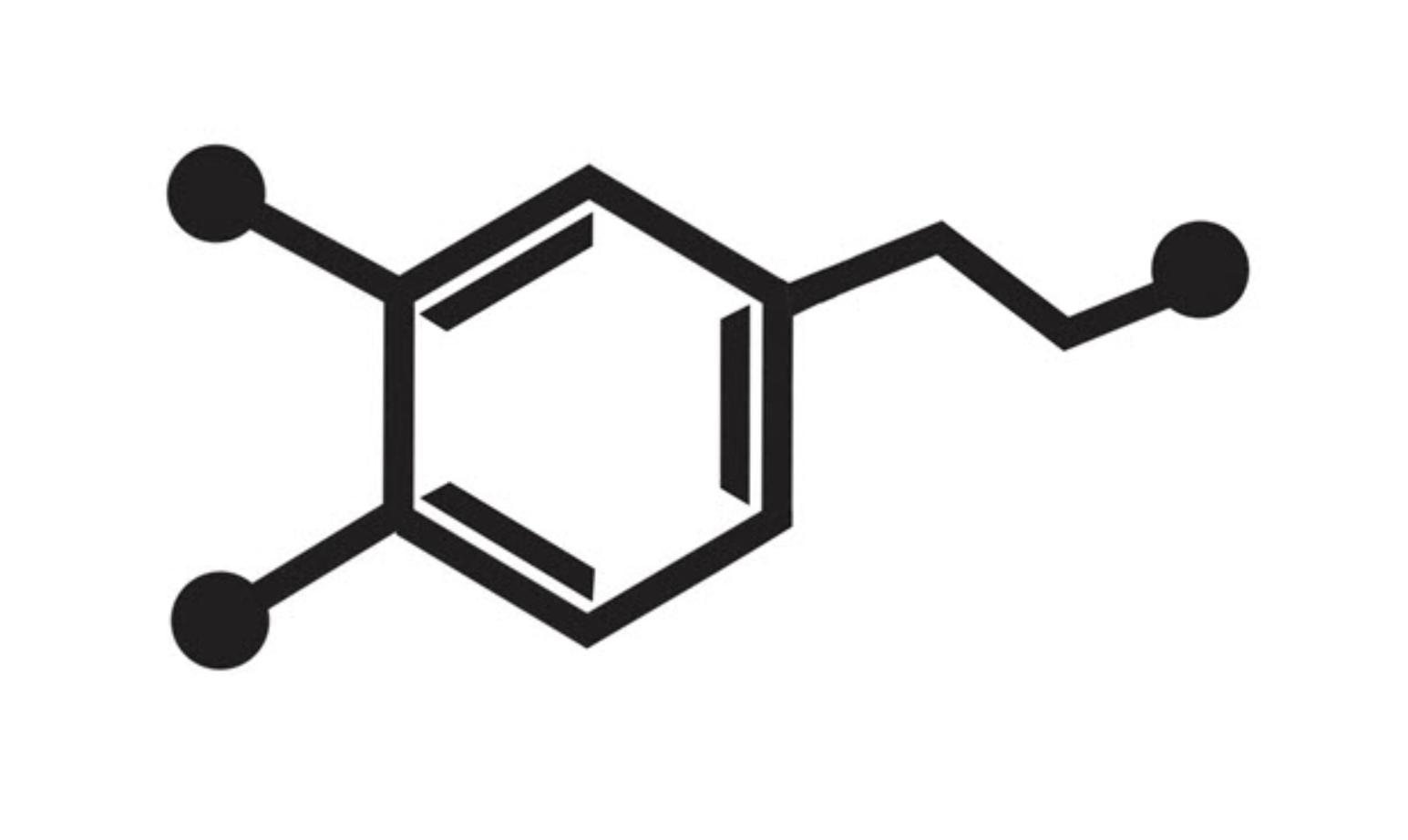 Дофамин. как работает «гормон мотивации»?
