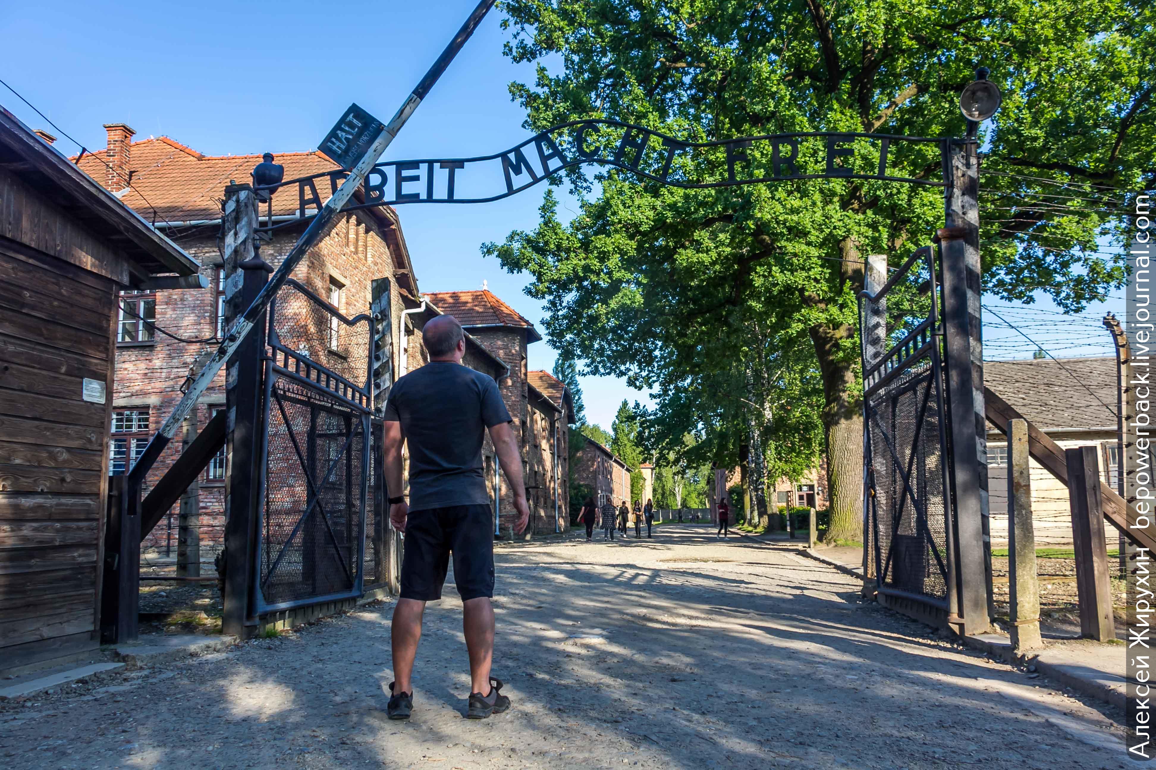 Освенцим – место, где под запретом слово «жизнь»
