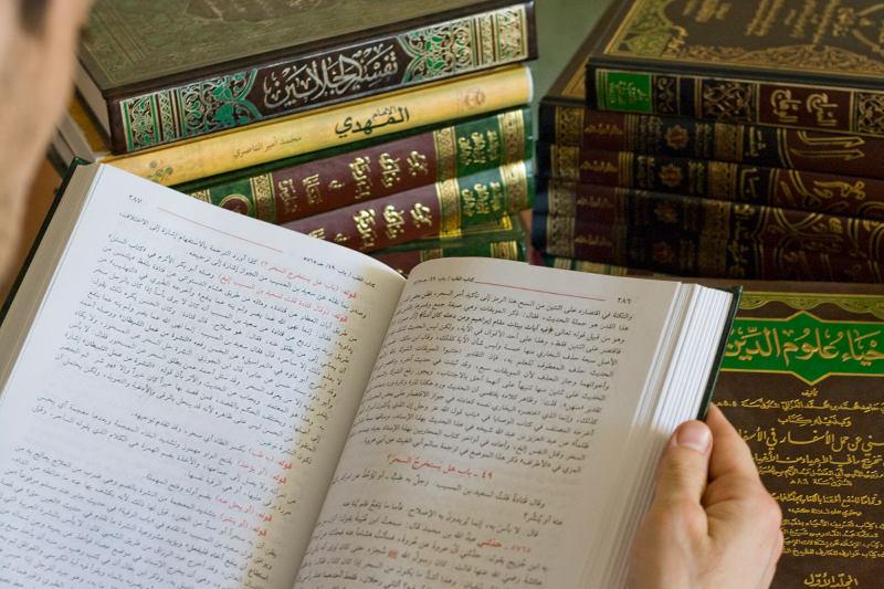 Халиф — википедия. что такое халиф