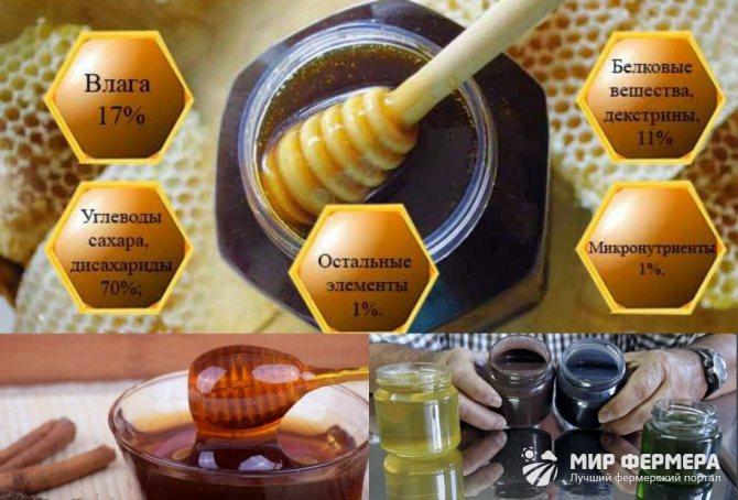 Падевый мед – что это такое, как отличить от цветочного, как определить в домашних условиях? падевый мед – польза и вред
