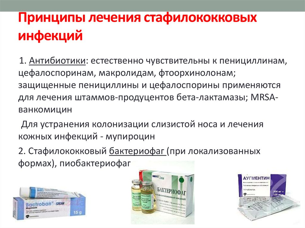 Чем опасен стафилококк и в каких случаях его нужно лечить?