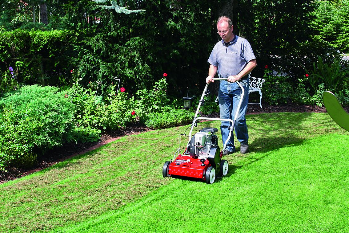 Скарификация газона: почему, когда, зачем и как скарифицировать газон (полное руководство)
