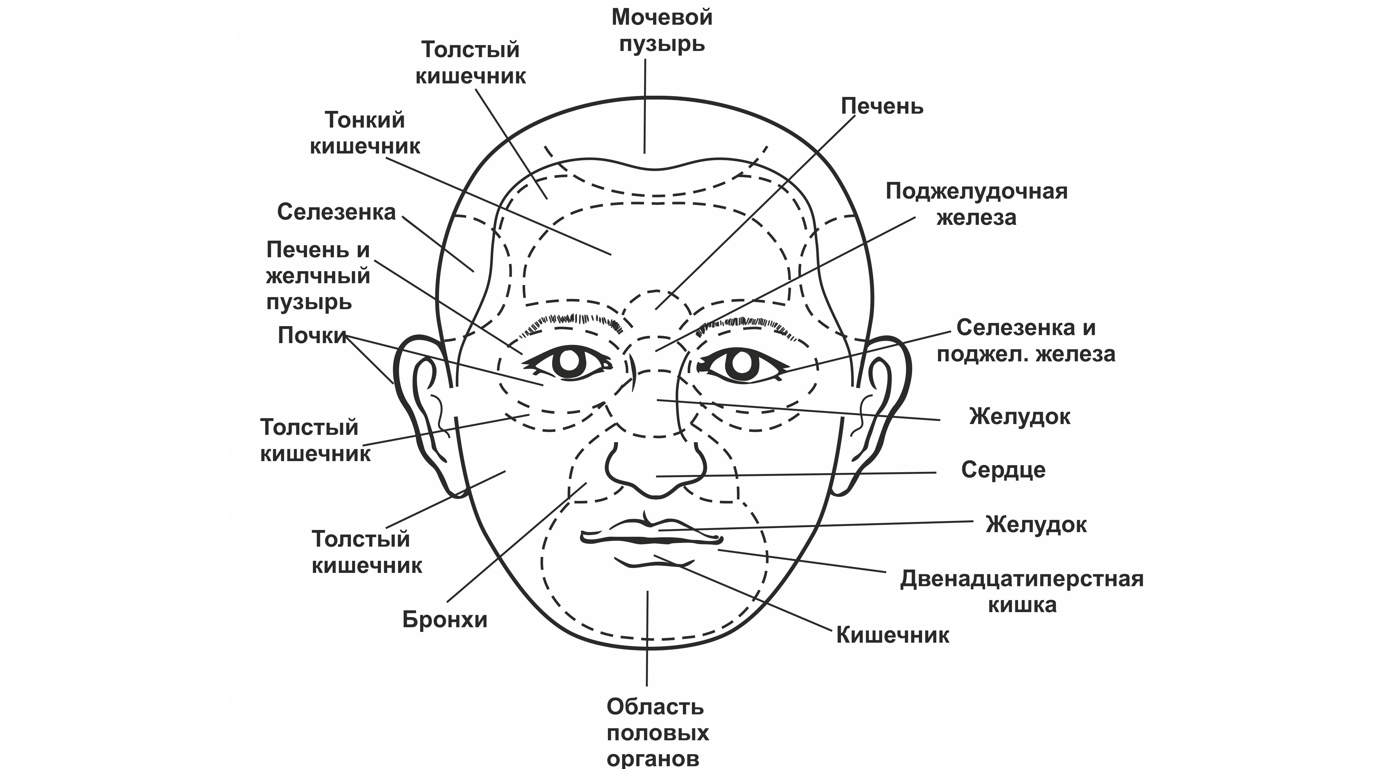 Жирная т-зона на лице