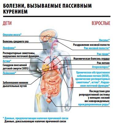 Вред курения. вред курения на организм человека. статья о вреде курения. какой вред приносит курение