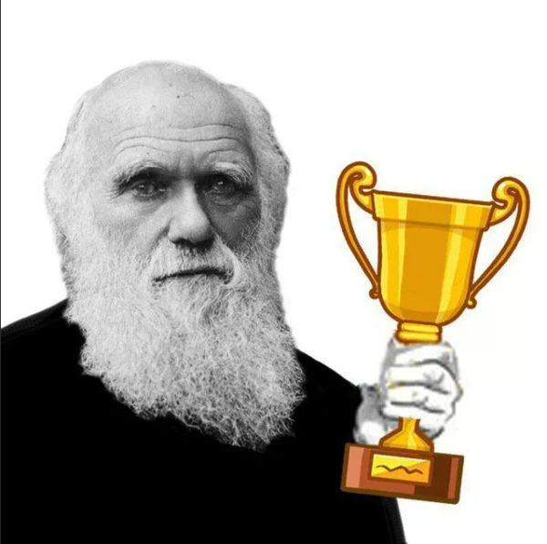 Премия дарвина — википедия