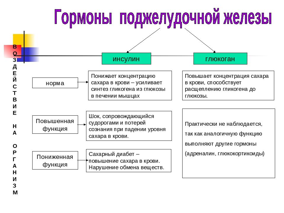 Виды инсулина: 4 основных вида (таблица инсулинов)