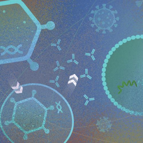 Что такое микробиология и что она изучает?