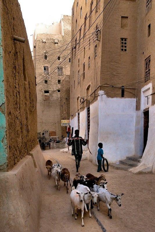 Катар – пустынная страна с высоким уровнем жизни