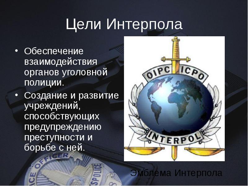 Интерпол — википедия. что такое интерпол