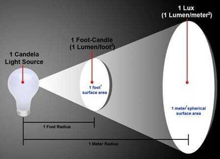 Уровень освещенности, высокий или низкий?