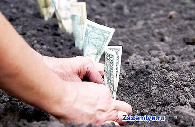 Преимущества и недостатки инвестиционного пая   allkredits