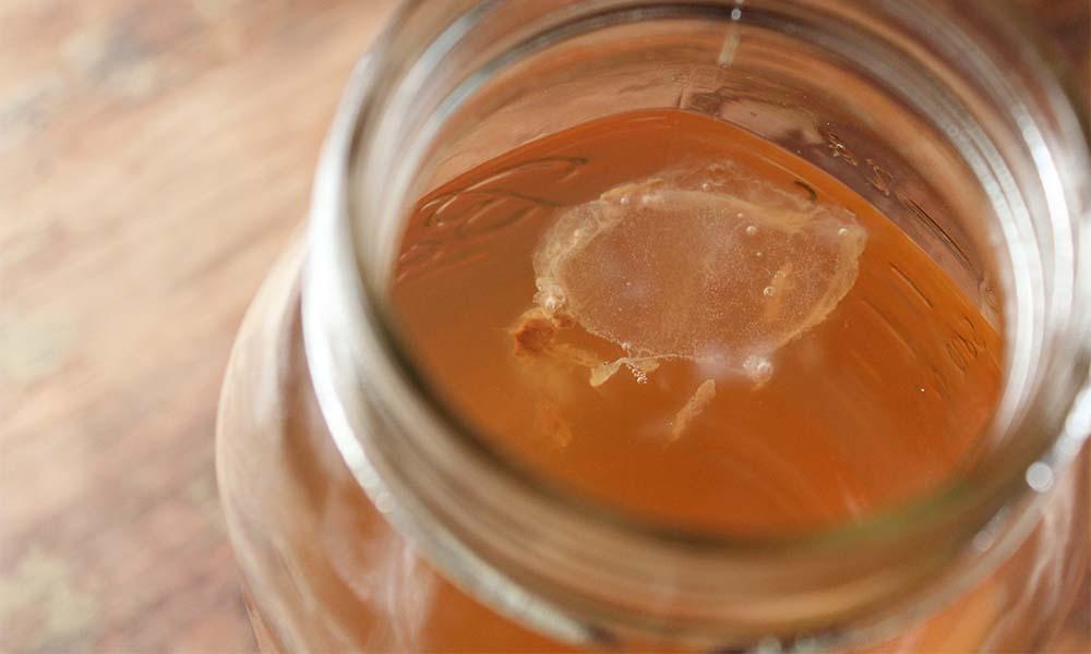 Чайный гриб — 8 полезных свойств, а также противопоказания комбучи для организма человека
