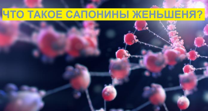 Сапонины. сапонины – полезные вещества растений механизм действия сапонинов