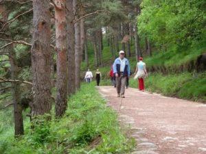 Терренкур – что это такое, чем полезна тропа здоровья, и кому она показана?