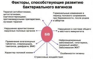 Бактериальный вагиноз, что это? симптомы, лечение и причины