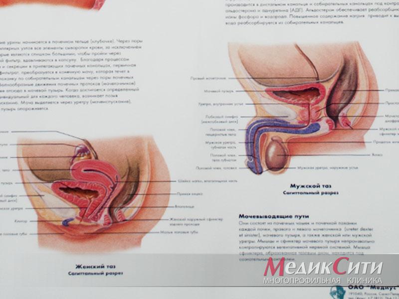 Уретрит: лечение, симптомы, причины и профилактика