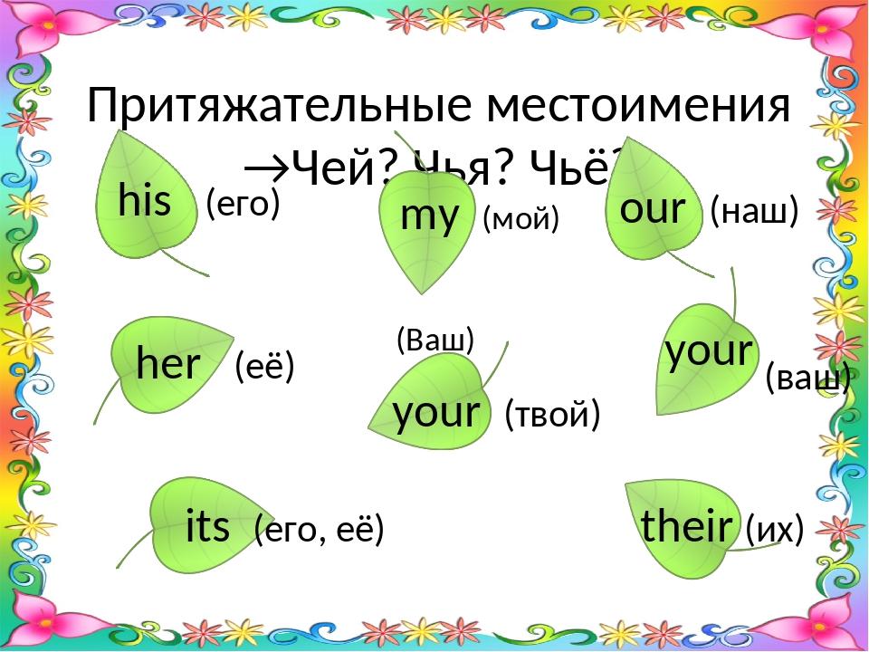 Притяжательные местоимения. (possessive pronouns)