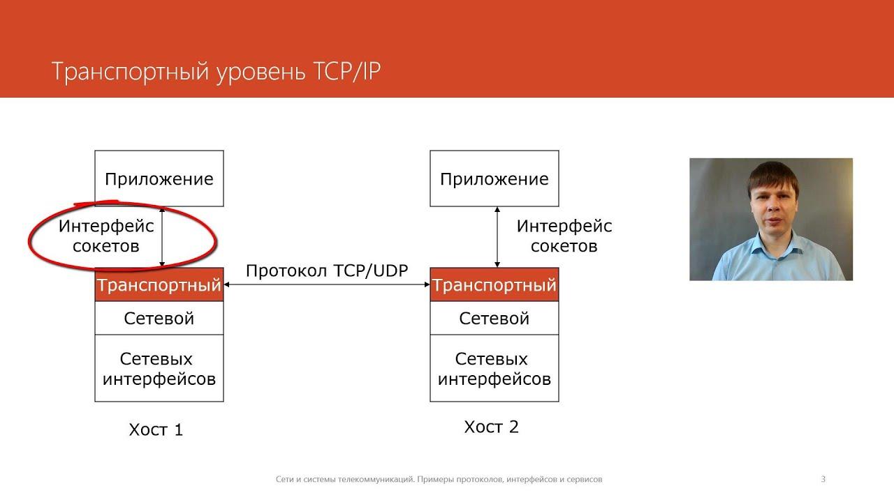 Виды сетевых протоколов и их сравнение