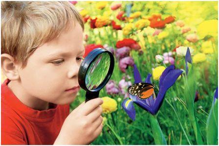 Познание — что это такое: его формы, уровни и методы научного вида