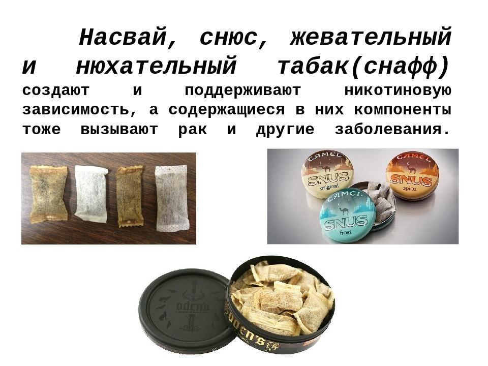 Нюхательный табак (снафф)  модная привычка или пагубная зависимость?