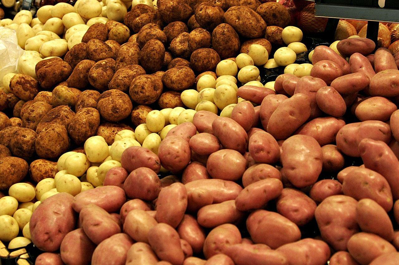 Картофель: фото и описание