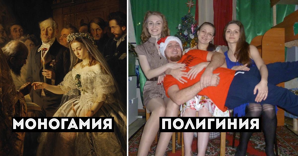 Полигамия и полигамность: что это, кто такой полигамный мужчина, полигамная семья и полигамный брак