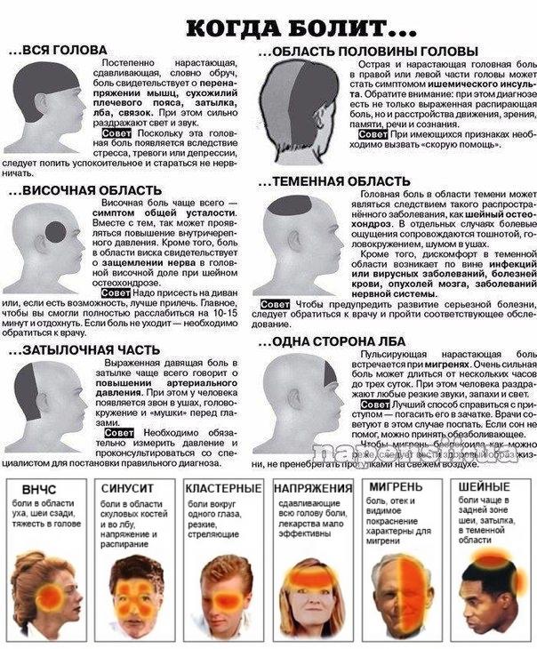 Мигрень: 19 средств, которые помогут избавиться от головной боли — net-bolezniam.ru